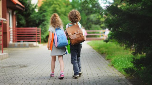 Куда обращаться, если братьев и сестер отказываются зачислить в одну школу? Советы юриста