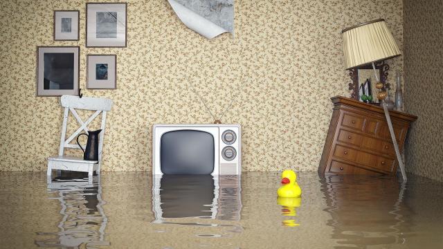 Погода в доме. Как получить компенсацию за затопленное жильё