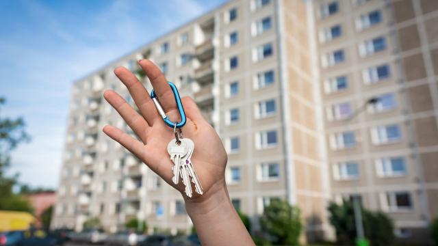 «Договор найма» или «договор аренды» — что на самом деле правильно использовать при съёме жилья?